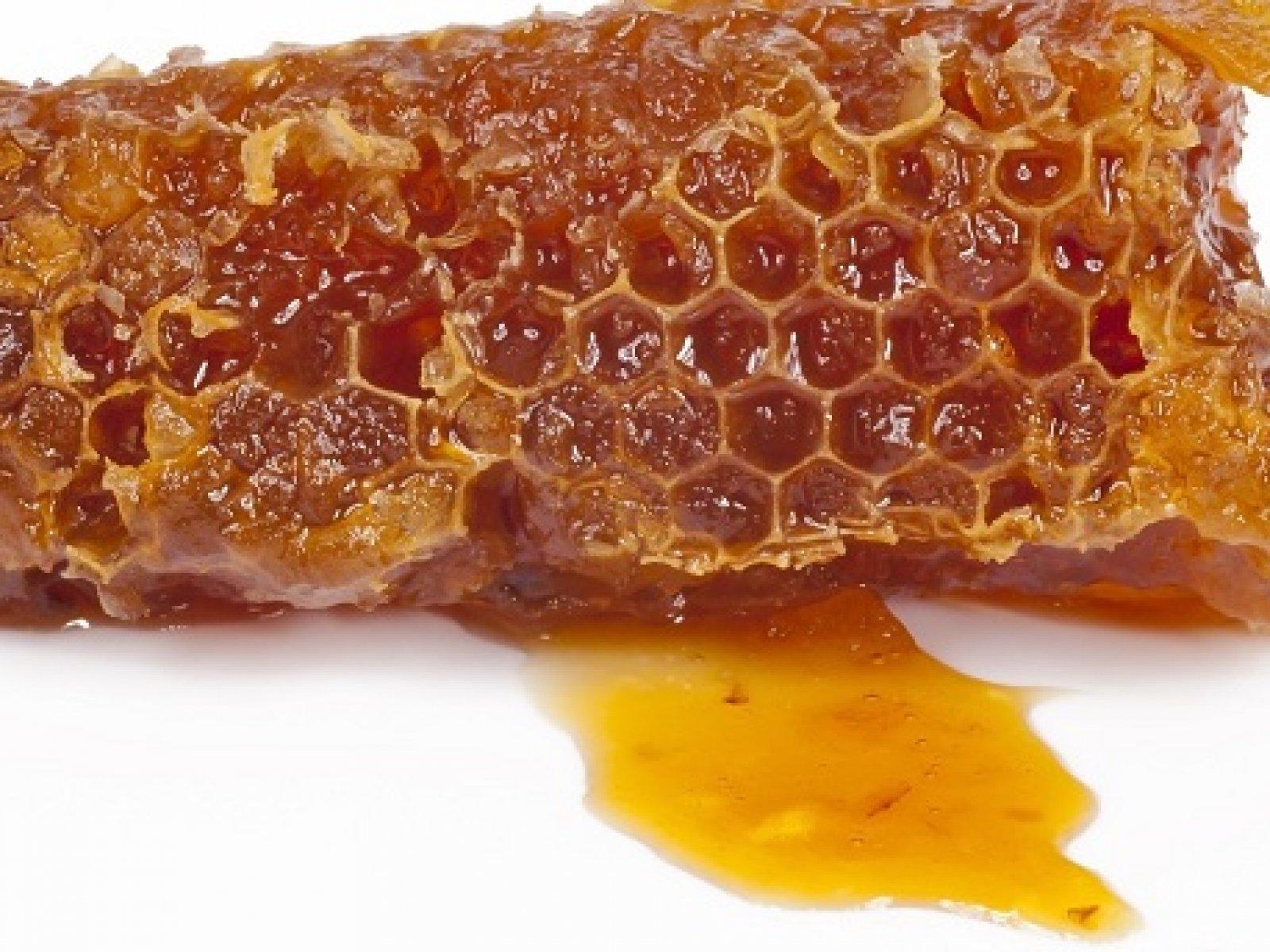 Orvosi méz használata sebkezelés esetén