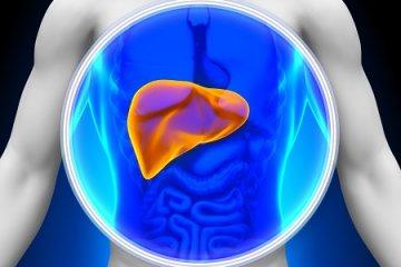 Cukorbetegségben nő a zsírmáj kialakulásának kockázata